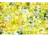 AS Creation XXL Food 2010 Lemon 0431-13 , 43113  4m x...