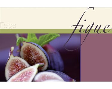 AS Creation XXL Food 2010 Fig 0432-01 , 43201  2m x 1.33m Fototapete